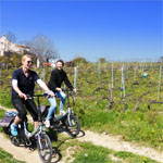Secret Organic Vineyards of Nice eBike Tour